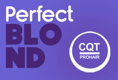 Logo Perfect Blond
